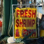 Freshly Purchased Shrimp and Fish